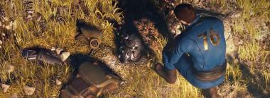 Bethesda Assures Fans Fallout 76 Is Not Going Free-to-Play